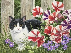 Minnie in the Petunias by William Vanderdasson