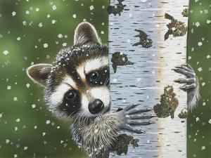 Peek-A-Boo Raccoon by William Vanderdasson
