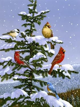 Songbirds on a Limb by William Vanderdasson