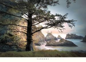 All Day Dreamer by William Vanscoy