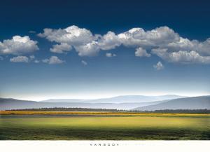 Catch the Wind by William Vanscoy