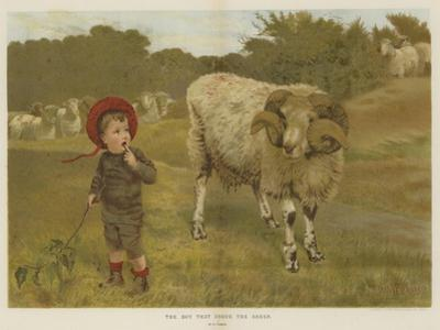 The Boy That Drove the Sheep