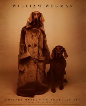 Dog Walker by William Wegman
