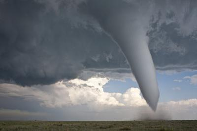 Campo Tornado by Willoughby Owen