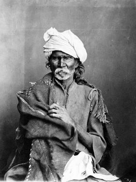 Portrait of an Indian Man, from 'The Costumes and People of India', C.1860s by Willoughby Wallace Hooper