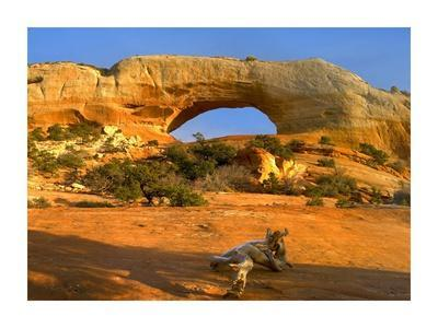 https://imgc.allpostersimages.com/img/posters/wilson-arch-with-a-span-of-91-feet-and-height-of-46-feet-made-of-entrada-sandstone-utah_u-L-F7IC3F0.jpg?p=0