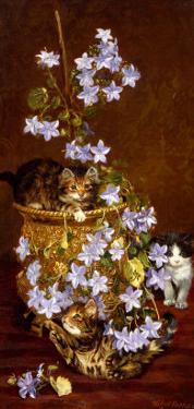 Kittens and Flowers, c.1903 by Wilson Hepple