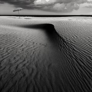 Umbrella On The Beach by Wim Schuurmans