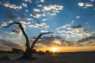 Sunrise Landscape in Sossusvlei, Namibia, July 2014