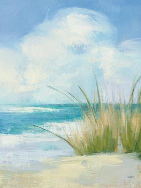 Wind and Waves III