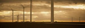 Wind Turbines in a Field, Amarillo, Texas, USA