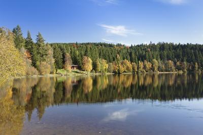 https://imgc.allpostersimages.com/img/posters/windgfaellweiher-close-schluchsee-black-forest-baden-wurttemberg-germany_u-L-Q1EY4OO0.jpg?artPerspective=n