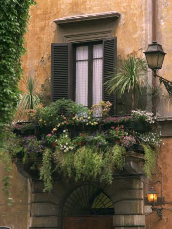 Window Display Near Piazza Navona, Rome, Lazio, Italy, Europe
