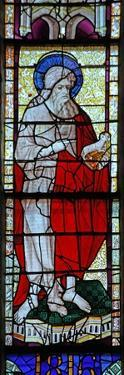 Window W6 Depicting St John the Baptist