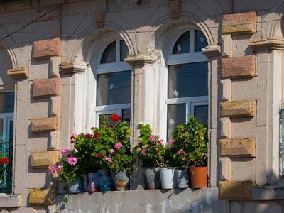 https://imgc.allpostersimages.com/img/posters/windows-and-flowers-in-village-cappadoccia-turkey_u-L-P243AP0.jpg?artPerspective=n