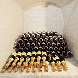 Wine and Champagne, Cellar