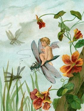 Winged Fairy Riding a Dragonfly Near Nasturtium Flowers, 1882
