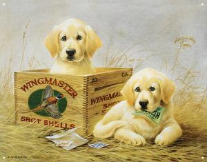 Wingmaster Shot Shells Hunting Dogs