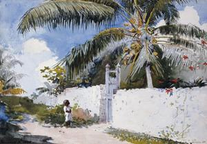 A Garden in Nassau, 1885 by Winslow Homer