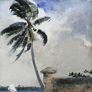A Tropical Breeze, Nassau, 1889-90 by Winslow Homer