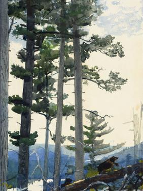 Old Settlers, 1892 by Winslow Homer