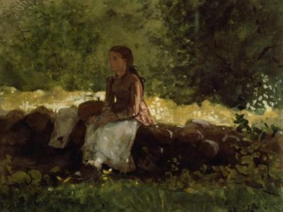 On the Fence by Winslow Homer