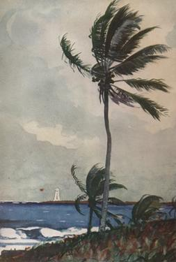 'Palm Trees, Nassau', 1898, (1932) by Winslow Homer