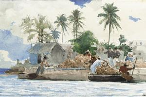 Sponge Fisherman, Bahamas by Winslow Homer