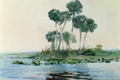 St. John's River, Florida, 1890 by Winslow Homer