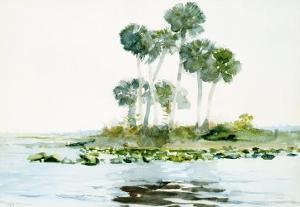 St. Johns River, Florida, 1890 by Winslow Homer
