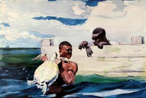Turtle Pound by Winslow Homer