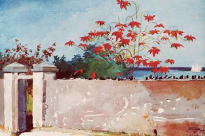 Wall, Nassau, c.1898