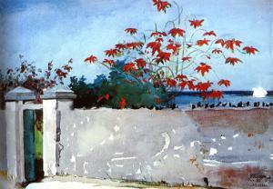 Wall Nassau by Winslow Homer