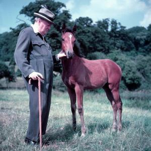 Winston Churchill and Horse