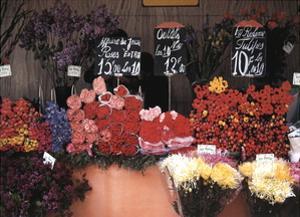 Flower Market Paris by Winston Swift Boyer