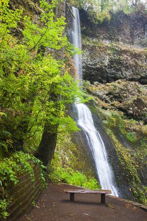 https://imgc.allpostersimages.com/img/posters/winter-falls-silver-falls-state-park-oregon-usa_u-L-PN6S6P0.jpg?p=0