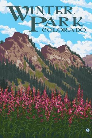 https://imgc.allpostersimages.com/img/posters/winter-park-colorado-fireweed-and-mountains_u-L-Q1GQM1Z0.jpg?p=0