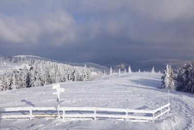 https://imgc.allpostersimages.com/img/posters/winter-scenery-at-the-kandel-black-forest-baden-wurttemberg-germany_u-L-Q1EY0TC0.jpg?artPerspective=n