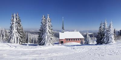 https://imgc.allpostersimages.com/img/posters/winter-scenery-on-kandel-close-church-black-forest-baden-wurttemberg-germany_u-L-Q1EY11G0.jpg?artPerspective=n