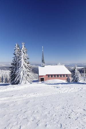 https://imgc.allpostersimages.com/img/posters/winter-scenery-on-kandel-close-church-black-forest-baden-wurttemberg-germany_u-L-Q1EY4YV0.jpg?artPerspective=n
