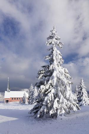https://imgc.allpostersimages.com/img/posters/winter-scenery-on-the-kandel-with-church-black-forest-baden-wurttemberg-germany_u-L-Q1EY1500.jpg?artPerspective=n
