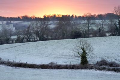 https://imgc.allpostersimages.com/img/posters/winter-trees-and-fields-in-dawn-frost-stow-on-the-wold-gloucestershire-cotswolds-england-uk_u-L-PWFFM70.jpg?artPerspective=n