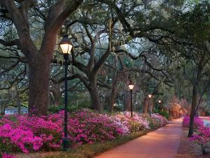 Forsythe Park by Winthrope Hiers