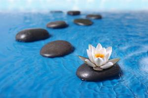 Zen Stones in Water by witold krasowski