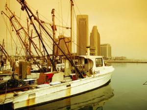 Fishing Boats at Harbour, Corpus Christi, Texas by Witold Skrypczak