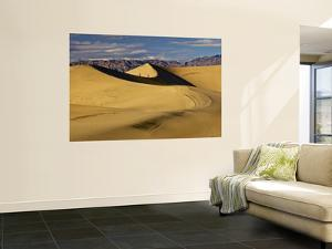 Hikers at Mesquite Flat Sand Dunes with Amargosa Range in Background by Witold Skrypczak