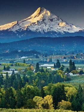 Mount Hood at Dawn from Panorama Point County Park in Hood River by Witold Skrypczak