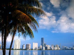 Skyline from Rickenbacker Causeway, Miami, Florida by Witold Skrypczak