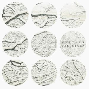 Inspirational Circle Design - Snowy Branches by WizData