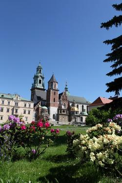Wawel Hill and the Royal Castle in Krakow by wjarek